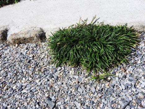 お庭の砂利敷きを安くおこなうには…?