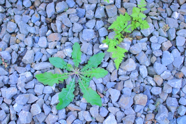 砂利の下には除草シートを敷いて除草効果をアップ!